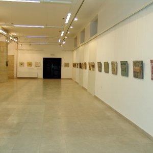 2008-izlozbeni-salon-muzej-medjimurja-cakovec-izlozba-okamine-1