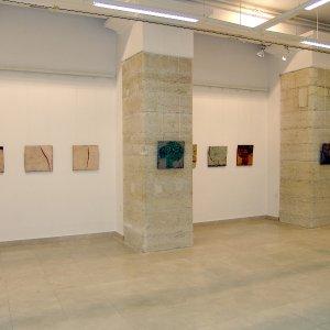 2008-izlozbeni-salon-muzej-medjimurja-cakovec-izlozba-okamine-2